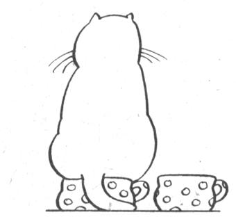 О породах кошки выставки для кошек